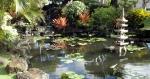 Pono Kai Pond