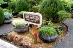 Pono Kai Herb Garden